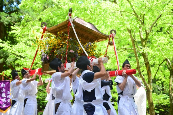 180520御神輿担ぎー白山中居神社ー春季例大祭