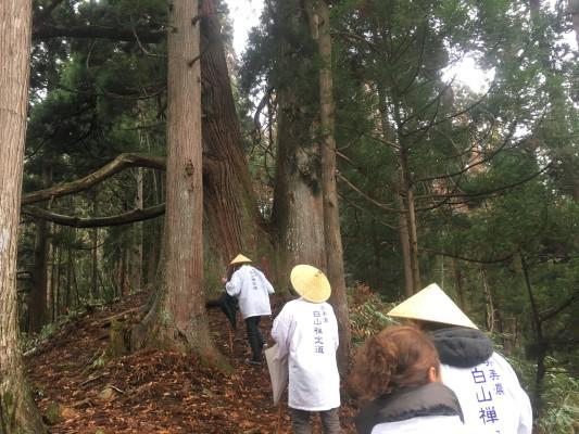 191212白山信仰&集落生活ガイドー浄安杉への巡礼