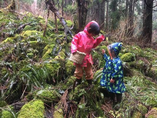 200418子ども達と森へ山菜パトロール
